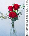 在沖繩開花的紅玫瑰在沖繩亞熱帶的美麗的花朵 74273885