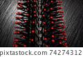 hair brush macro shoot 74274312