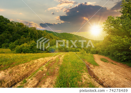 dirt road through forested countryside at sunset. beautiful summer rural landscape in mountains. adventure in nature scenery in evening light 74278489