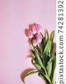 bouquet of tulips on pastel background 74281392