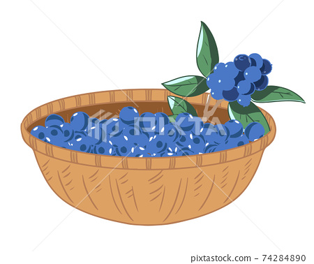 Blueberries in a basket without light blue lines 74284890