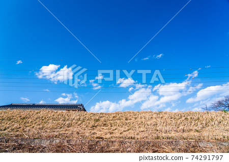 제방에서 올려다 주택가 풍경 74291797