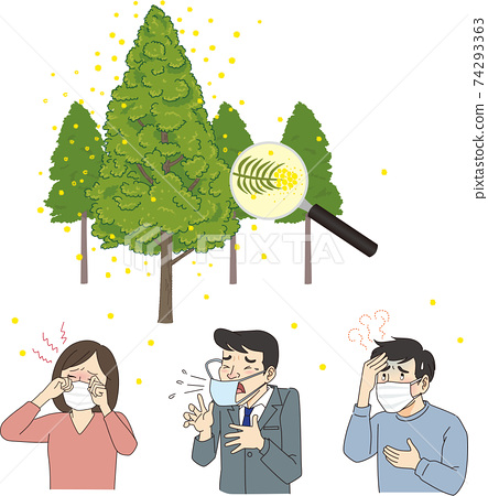 삼나무 꽃가루 꽃가루 알레르기의 일러스트 74293363