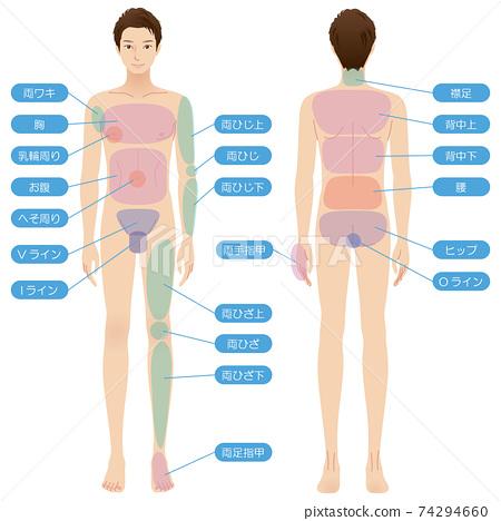男性身體脫髮部位美容裸露全身 74294660