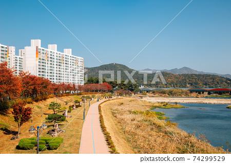 Miryang riverside park at autumn in Miryang, Korea 74299529
