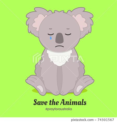 Baby Koala Feeling Sad. Save animals. Pray for Australia. Baby animal 74301567