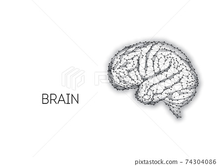 Futuristic low polygonal black brain made of connected lines, and dots isolated on white 74304086
