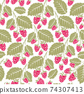 Raspberry seamless vector pattern. 74307413