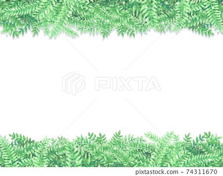 新鮮綠葉背景 74311670