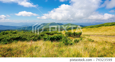 mountain landscape on a bright summer day. meadow in grass and plants on the hill. wonderful weather with fluffy clouds on the sky. chornohora ridge of carpathians 74323599