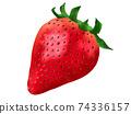 草莓草莓草莓水果圖 74336157