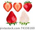 草莓草莓草莓水果圖 74336160