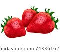 草莓草莓草莓水果圖 74336162