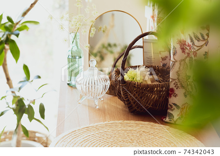 拍攝雜貨[植物圖片] 74342043