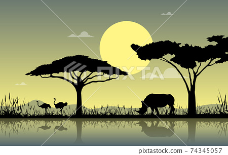Ostrich Rhino Oasis Animal Savanna Landscape Africa Wildlife Illustration 74345057