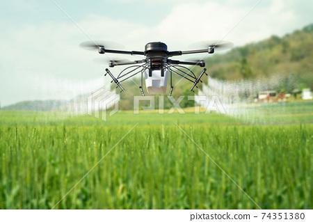 Drone spraying pesticide on wheat field. 74351380