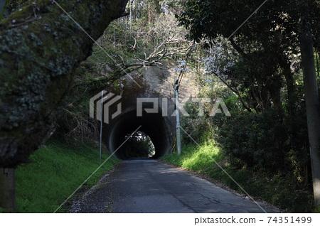 手挖隧道 74351499