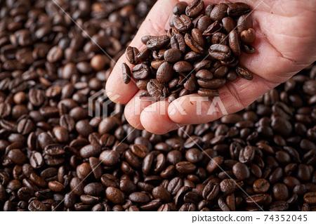 拿著咖啡豆 74352045