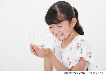 女孩手裡拿著一隻倉鼠 74352544