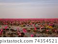 Kumpawapy紅潮百合湖 74354521
