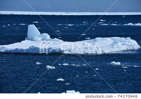Drift ice whale 74370948