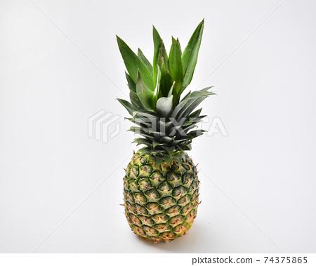 菠蘿 74375865