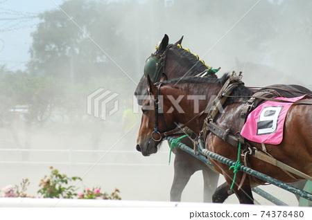 Hokkaido / Obihiro Banei Horse Racing 74378480