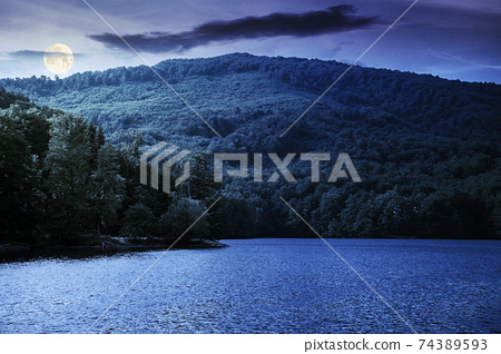 lake among beech forest in summer at night. beautiful nature landscape in mountains. vihorlat national park in full moon light 74389593