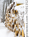 Stacked wooden logs in winter 74391352