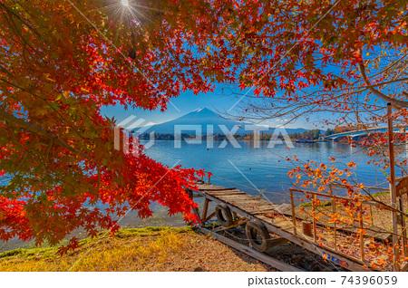 河口湖秋葉 74396059