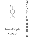 Cuminaldehyde, chemical formula and skeletal structure. Cuminal, natural organic compound and constituent of essential oils such as cumin, eucalyptus, myrrh or cassia. 4-isopropylbenzaldehyde. Vector. 74404723