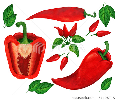 Hot and sweet red peppers big watercolor set 74408115