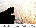 아침 응. 윈도우 필름 너머의 빛. 실루엣. 고양이 이미지 소재 74409257