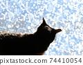 아침 응. 창가의 고양이. 창 필름 너머의 빛. 실루엣. 고양이 이미지 소재 74410054