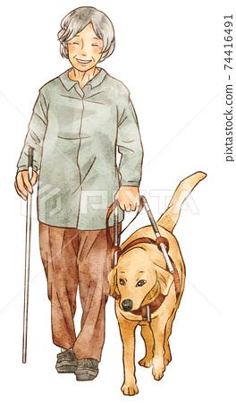 帶有導盲犬和白色手杖的殘疾人 74416491