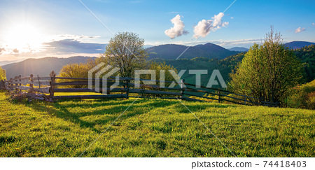 trees behind the fence on the grassy meadow. spring rural landscape in evening light. distant mountain ridge beneath a bright sky with fluffy clouds 74418403