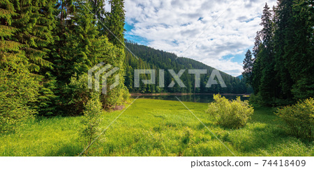 mountain lake landscape in summer. beautiful scenery of synevyr national park, ukraine. body of water among the forest. great view and amazing attarction of carpathian nature. travel europe concept 74418409