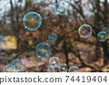 Colorful soap bubbles against blurred natural background. 74419404