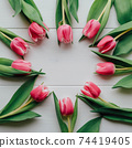 Beautiful fresh pink tulips in bloom on white wooden background. 74419405