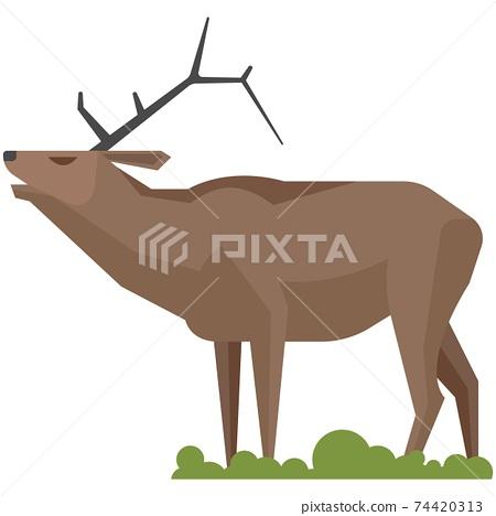 Wild horned reindeer roaring isolated on white background 74420313