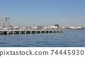 Yokohama Minatomirai District Hammer Head Park 74445930