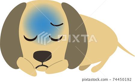 可愛的迷你臘腸狗,沒有精力 74450192