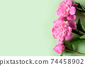 Banner of pink peony on green background. Floral pattern. 74458902