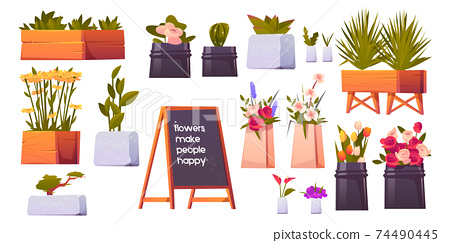 Flower shop set, potted plants and bonsai isolated 74490445