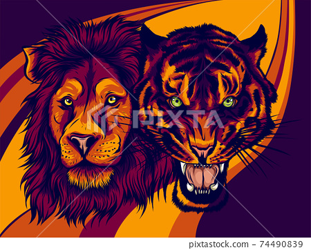 Angry Male Lion versus Angry Tiger vector illustration. 74490839