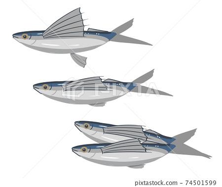 飛魚無線 74501599