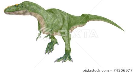 恐龍Alioramus霸王龍的成員,居住在白堊紀晚期的蒙古地區。曾是 74506977
