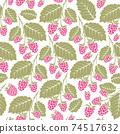 Raspberry seamless vector pattern. 74517632