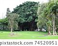 我去了夏威夷大島的Liliuokalani公園 74520951