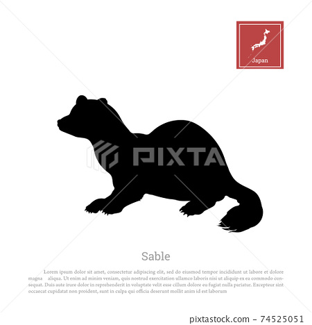 Black silhouette of a japanese sable on white background. Animals of Japan. Isolated icon 74525051